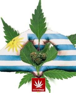 legal-weed